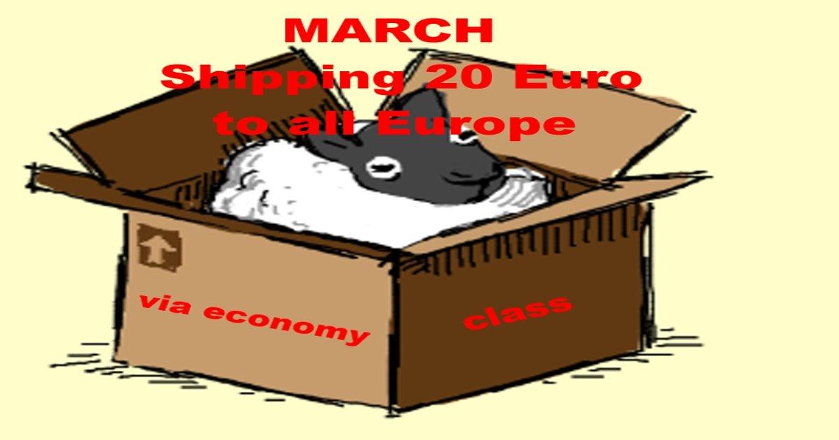 MARCH –  Shipping 20 euro