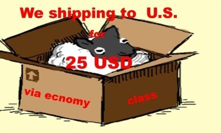Shipping to U.S. – 25 USD via economy